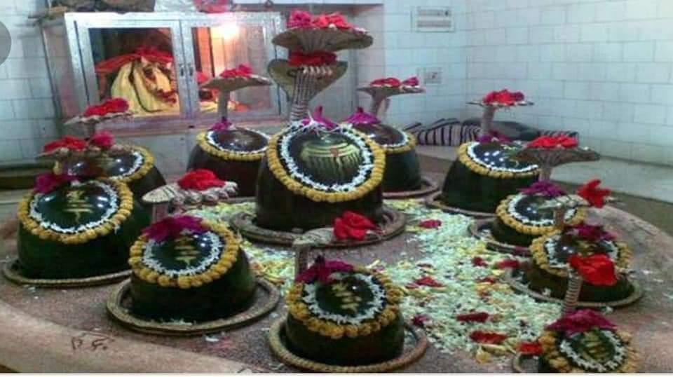 महा शिवरात्री विशेष:एक ऐसा अनोखा शिवालय ,जहां एक साथ इगारा शिवलिंग की पूजा की जाता है